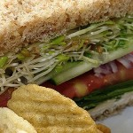Berkeley vegan sandwich